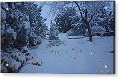My Colorado Backyard Acrylic Print