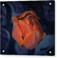 Mysterious Promise Acrylic Print