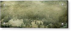 Mystic Wood Acrylic Print
