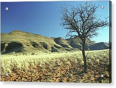 Namibia Acrylic Print