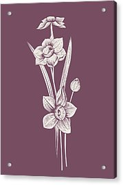 Narcissus Purple Flower Acrylic Print