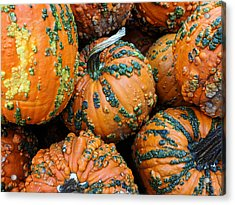 Acrylic Print featuring the photograph Nestled - Autumn Pumpkins by Debi Dalio