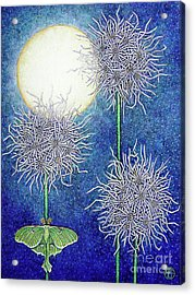 Night Garden 2 Acrylic Print