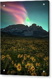 Acrylic Print featuring the photograph Northern Light Show / Augusta, Montana  by Nicholas Parker