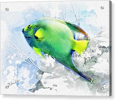 Ocean Colors Acrylic Print