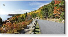 Ocean Drive Road Panorama, Acadia Acrylic Print by Picturelake