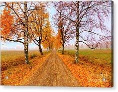 October Morning 6 Acrylic Print