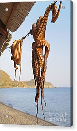 Octopus Drying In The Sun In The Greek Acrylic Print