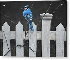 Acrylic Print featuring the painting Old Picket Fence by Peter Mathios