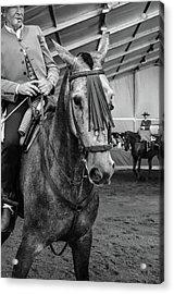 Old Rider Acrylic Print