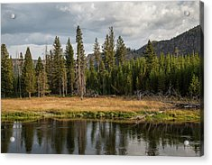 Acrylic Print featuring the photograph On The Banks Of The Madison River by Lon Dittrick
