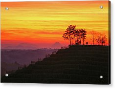 On The Viewpoint Acrylic Print