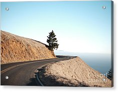 On The Way To Mount Tamalpais Acrylic Print