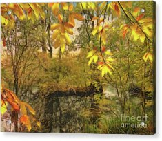 Once A Pond A Time Acrylic Print