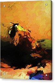 Orange Bull Cat Acrylic Print
