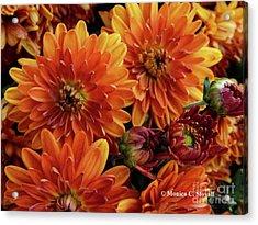 Orange Flowers No. 14 Acrylic Print