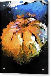 Orange Pumpkin Acrylic Print
