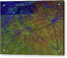 Organica 3 Acrylic Print