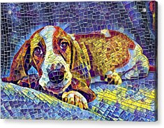 Otis The Potus Basset Hound Dog Art  Acrylic Print