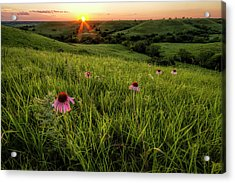 Out In The Flint Hills Acrylic Print