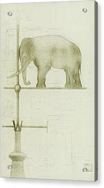 Pachyderm House, Philadelphia Zoo, Detail Of Weather Vane Acrylic Print