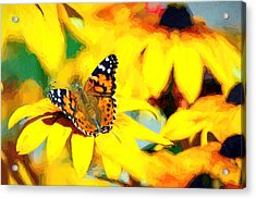 Painted Lady Butterfly Van Gogh Acrylic Print