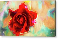 Painted Rose On Colorful Stucco Acrylic Print