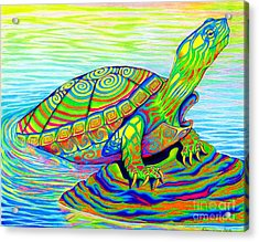 Painted Turtle Acrylic Print