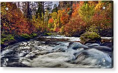Palisades Creek Autumn Light Acrylic Print by Leland D Howard