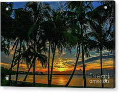 Acrylic Print featuring the photograph Palm Tree Lagoon Sunrise by Tom Claud