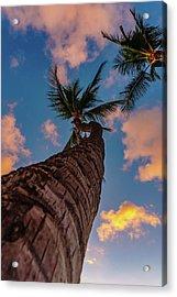 Palm Upward Acrylic Print