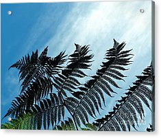 Palms Flying High Acrylic Print