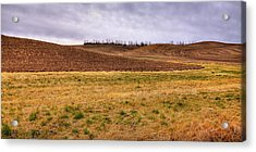 Acrylic Print featuring the photograph Palouse Farmland by David Patterson