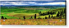 Palouse Hills From The Butte Acrylic Print