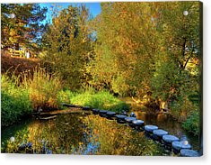 Acrylic Print featuring the photograph Palouse River Reflections by David Patterson