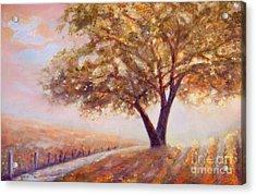 Paso Robles Oak Tree Acrylic Print