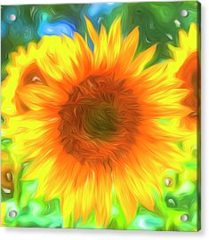 Pastel Sunflower Art Acrylic Print