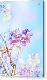 Pastels In The Sky Acrylic Print