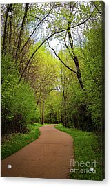 Path In The Forest Acrylic Print