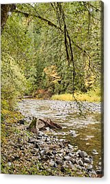 Peaceful Molalla River Acrylic Print