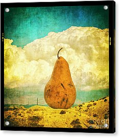 Acrylic Print featuring the photograph Pear In The Landscape by Terry Rowe
