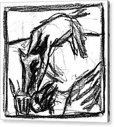 Pencil Squares Black Canine F Acrylic Print