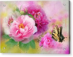 Peonies And Butterfly Acrylic Print