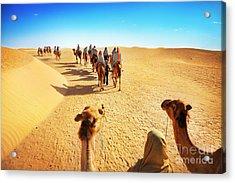 People In The Sahara Desert Acrylic Print