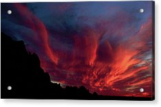 Phoenix Risen2 Acrylic Print