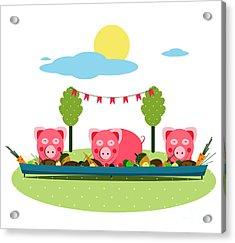 Pigs Eating Food At Farm. Funny Small Acrylic Print