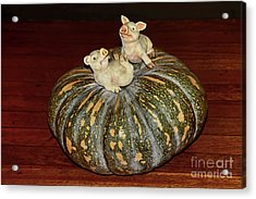 Pigs On Pumpkin By Kaye Menner Acrylic Print
