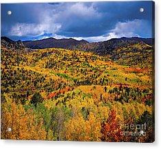 Pikes Peak Autumn Acrylic Print