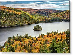 Acrylic Print featuring the photograph Pine Island At Wapizagonke Lake by Pierre Leclerc Photography
