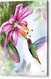 Pink Flower For Hummingbird Acrylic Print